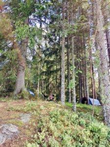 Unser Zeltlager im Wald, am See.