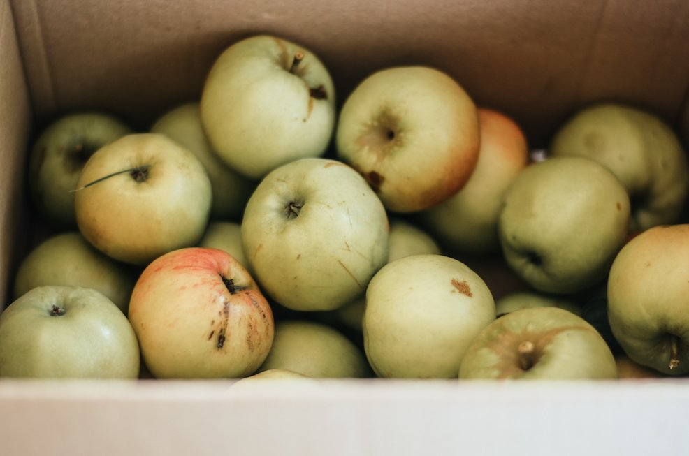 äpfel in einer kiste gesammelt beim homeschoolen